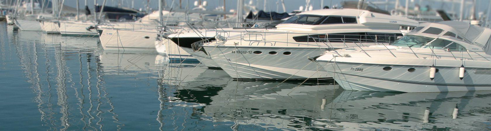 Permalink zu:Sportbootführerschein See